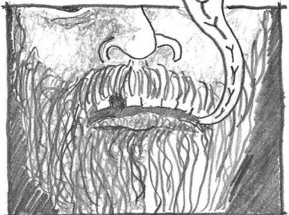 """comic drawing close up of bearded man saying """"pussy"""""""