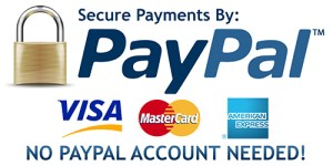 Secure Payments by PayPal plus logos