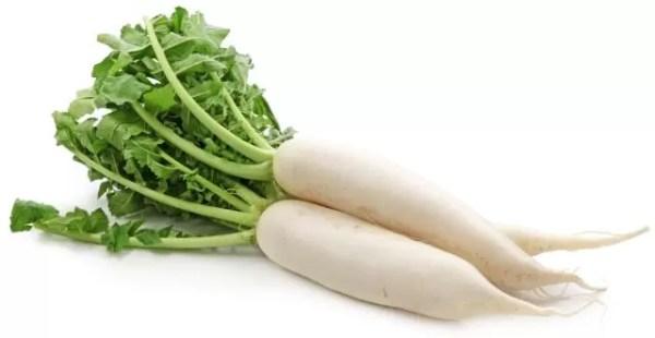 Daikon White Radish Medicinal Uses Side Effects