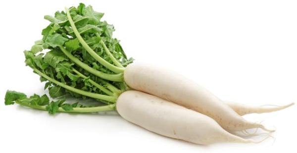 Daikon White Radish Medicinal Uses Side Effects