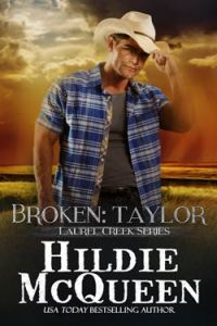 broken web final 200x300 Takeover Thursday with Author Hildie McQueen Laurel Creek Part 1