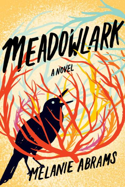 front cover of Meadowlark by Melanie Abrams