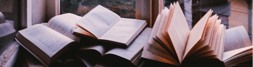 nowości książki okno