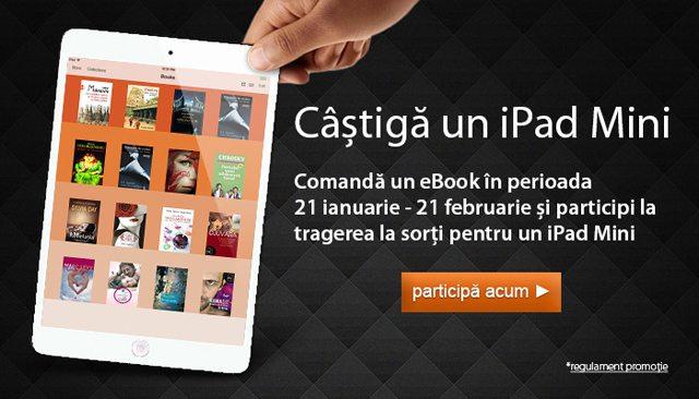 concurs_iPad_mini_elefant