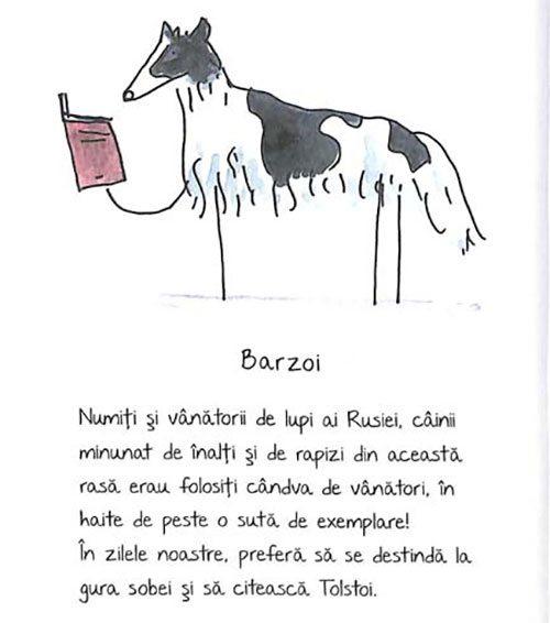 de-rasa-mic-compendiu-de-maniere-canine-4