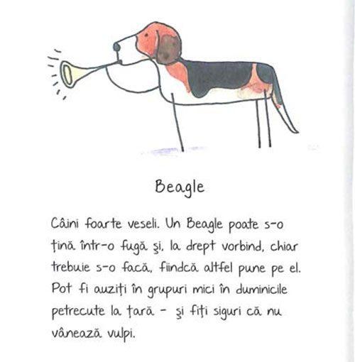 de-rasa-mic-compendiu-de-maniere-canine-6