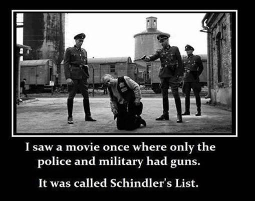 Gun control and the Nazis