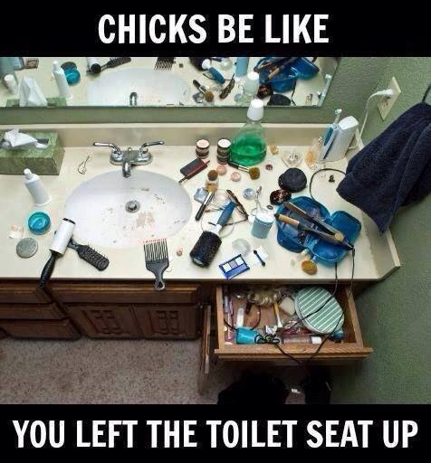 You left the toilet seat up