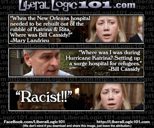 Mary Landrieu fail regarding Bill Cassidy