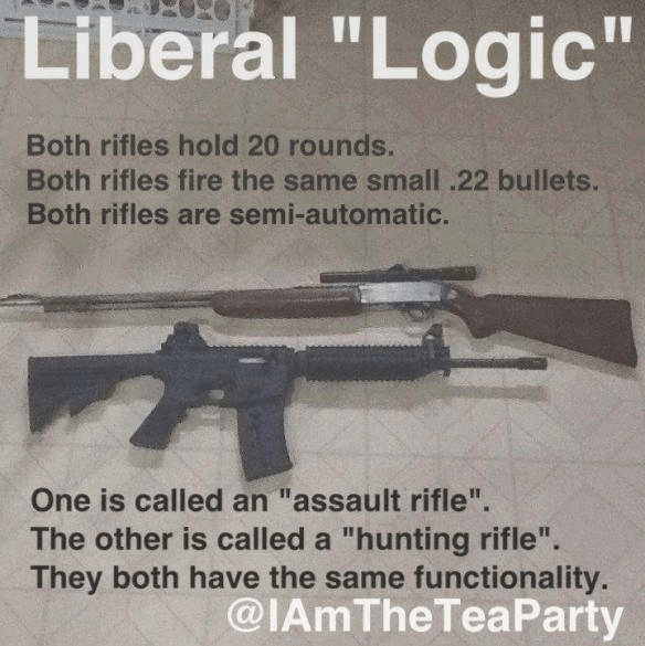 So-called assault rifles and hunting rifles different only in aesthetics