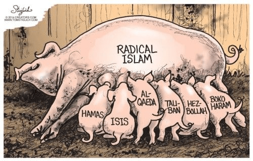 All the Islamist factions are Islam