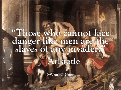 Aristotle on cowards and slavery