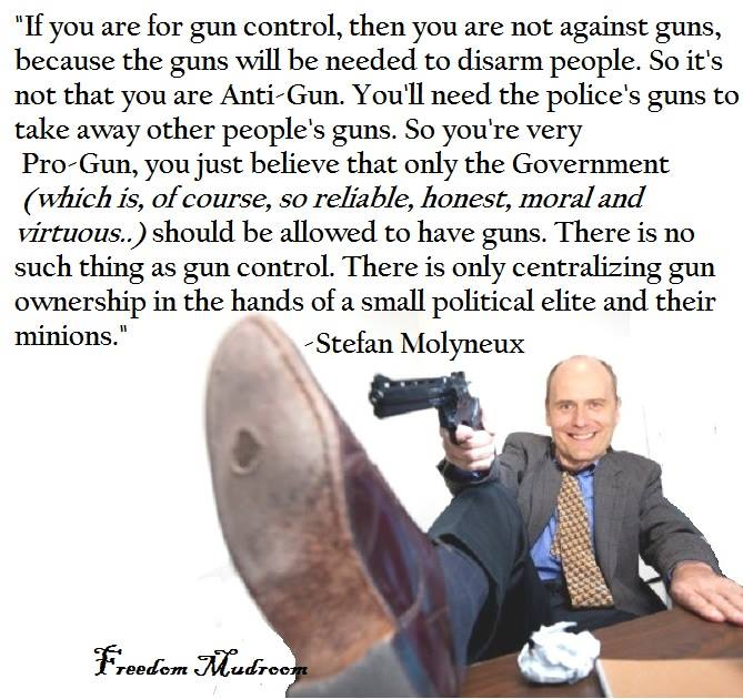 No such thing as gun control Stefan Molyneux