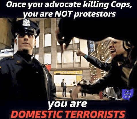 Police killers are domestic terrorists