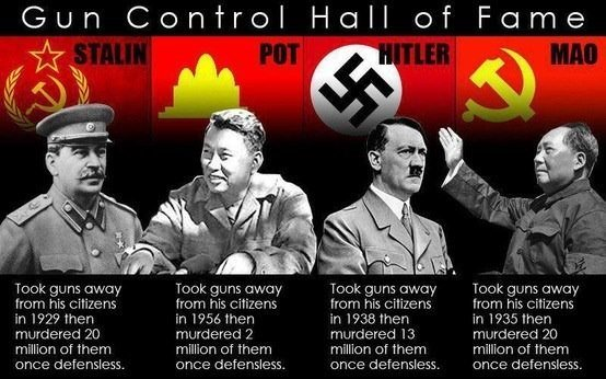 Guns gun control Hall of Fame
