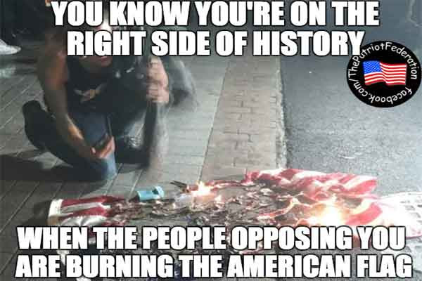 stupid-leftists-burning-american-flag