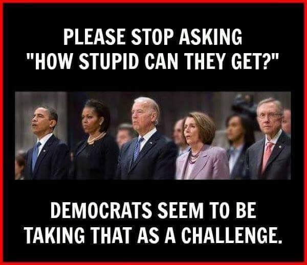 stupid-leftists-take-it-as-a-challenge