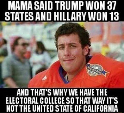 stupid-leftists-why-we-have-the-electoral-college