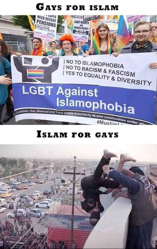 stupid-leftists-gays-and-islam