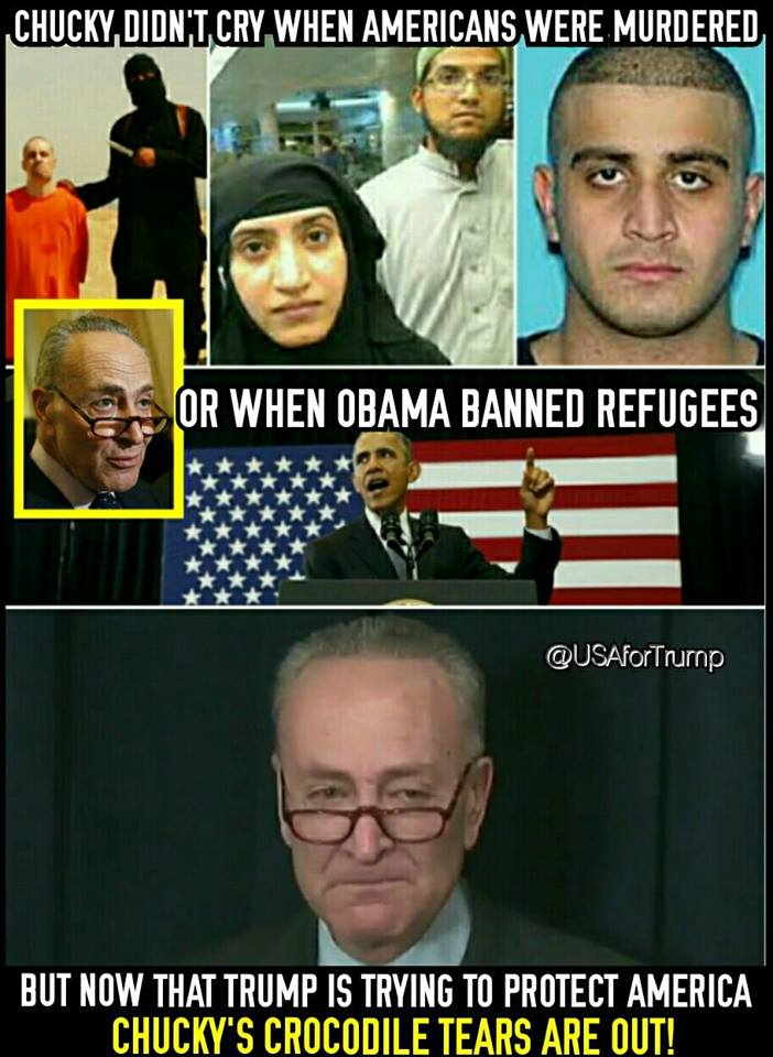 stupid-leftists-schumer-a-hypocrite