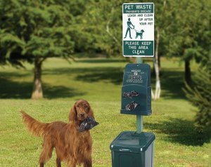 Dog waste Regulations Administrative State
