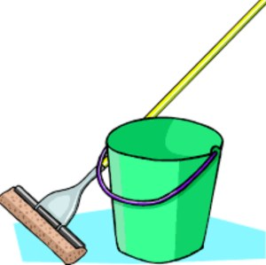 Mop and pail bucket