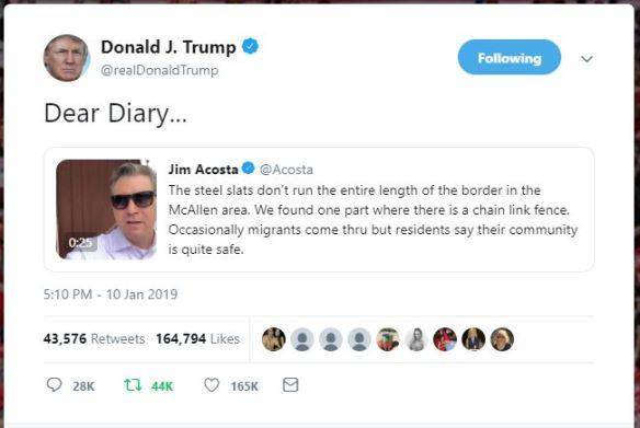 Acosta Donald Trump Dear Diary Border Wall
