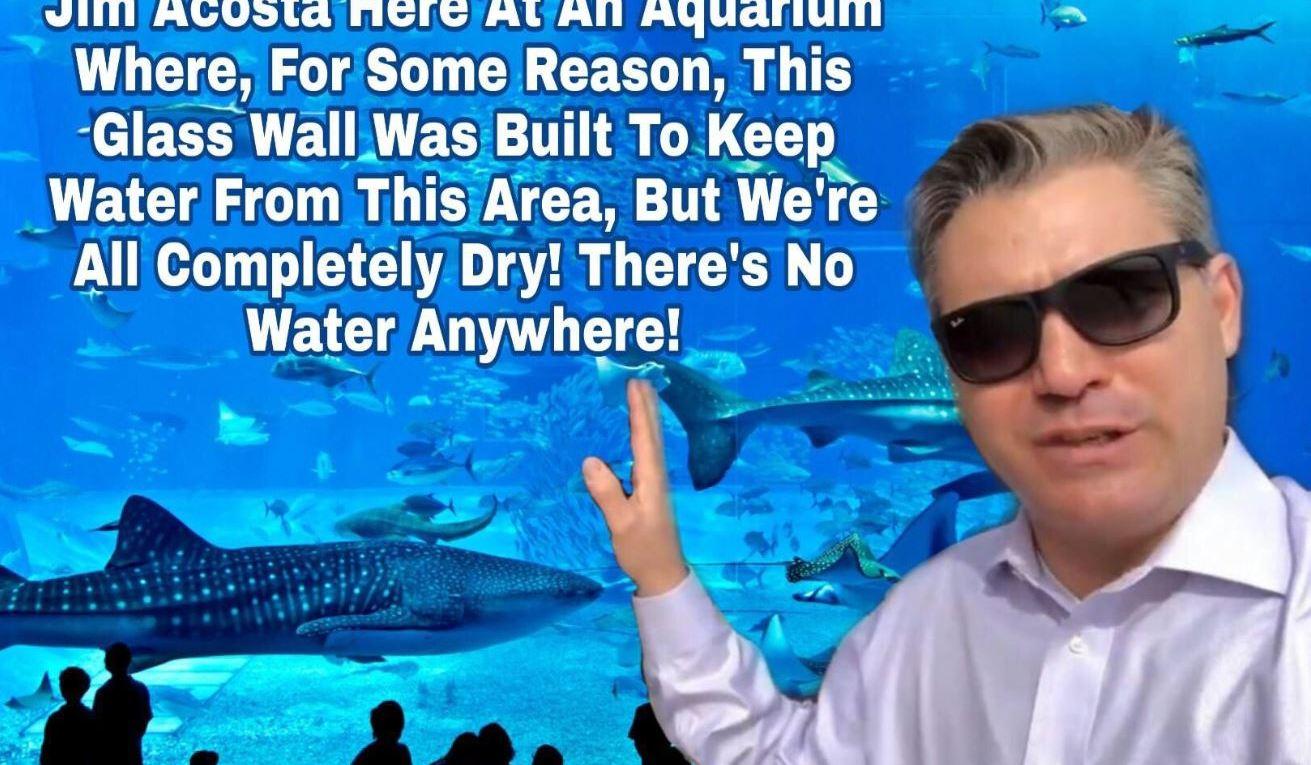 Acosta Border Wall Meme
