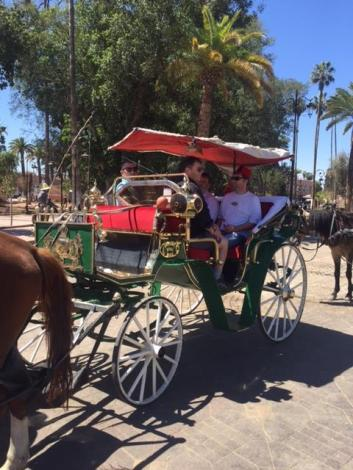 44 Horse and Carriage
