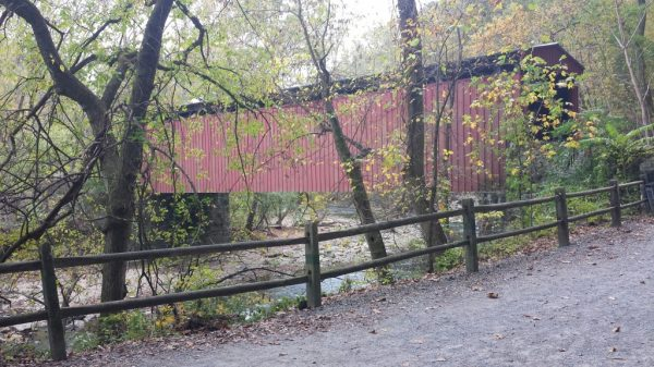 When you visit Philadelphia in the fall, you can enjoy fall foliage in Wissahickon Valley Park.