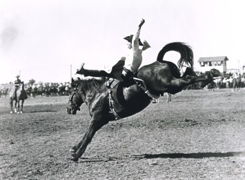 Vintage b/w photo of rodeo rider riding a bucking horse named mid-cap.