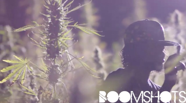 """WATCH THIS: Popcaan """"Weed Is My Best Friend"""" Official Music Video"""
