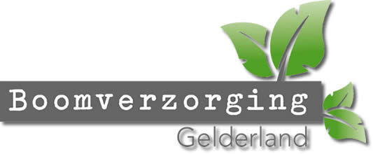 Boomverzorging Gelderland - Kappen Snoeien Rooien Winterswijk Achterhoek