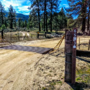 thomas mountain yellow post site #1