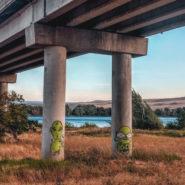 vernita bridge camping