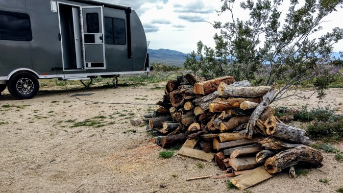 collecting firewood for camping