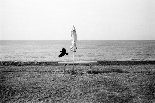 Bekaert41 Photographer Spotlight: Olivier Bekaert Design Photography