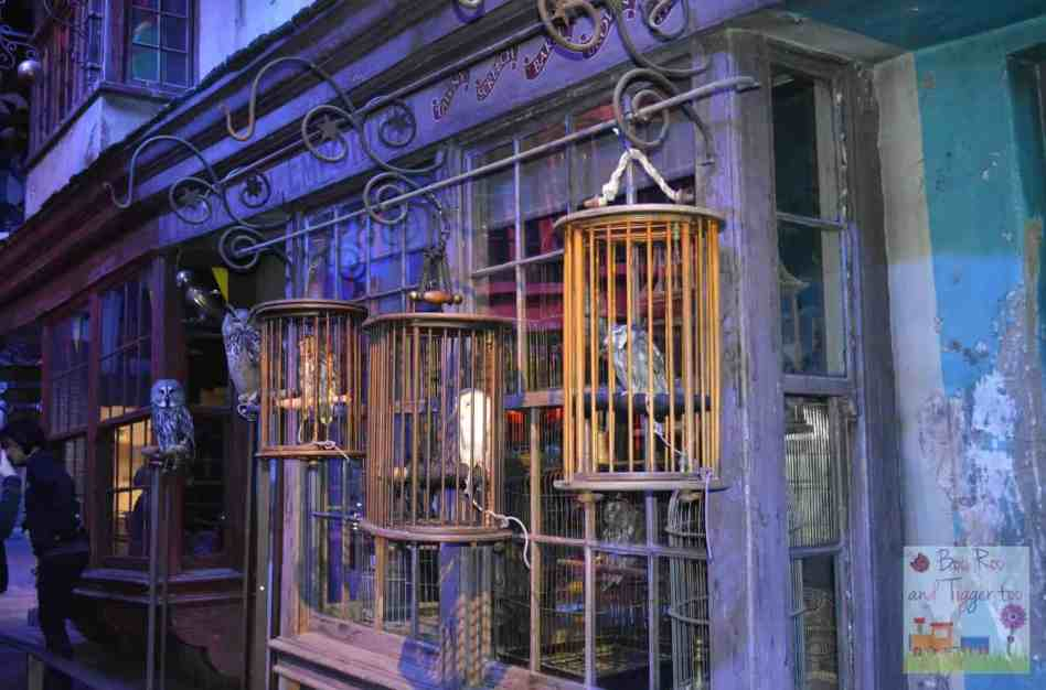 Harry Potter Feathers and Flight - Owls