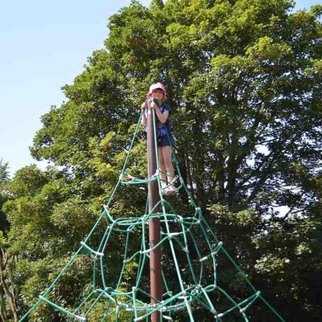 Festival on the Farm - Roo spiders web