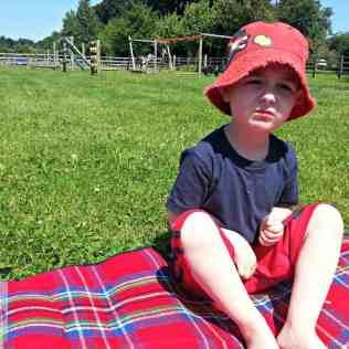 Redwings - Tigger picnic