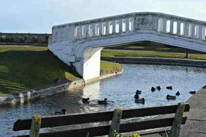 The Waterways - Duck watching