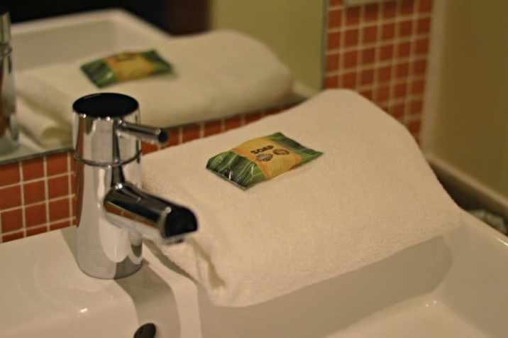Chessington World of Adventures - Azteca Hotel Temple Treasures Soap