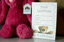 Say It With Bears Jellycat Rose Bunny - birth certificate
