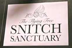 Harry Potter Book Night 2016 - The Flying Snitch Sanctuary