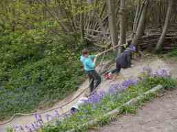 A visit to a National Trust property is always fun in half-term, here Michelle shares with you three of her favourites.