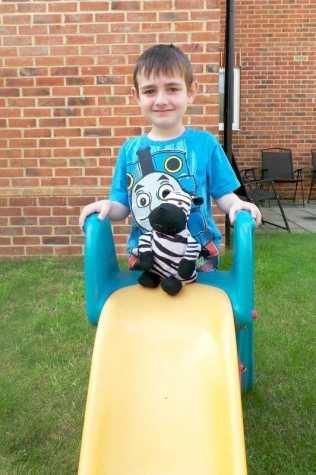 The Class Zebra - Tigger Little Slide