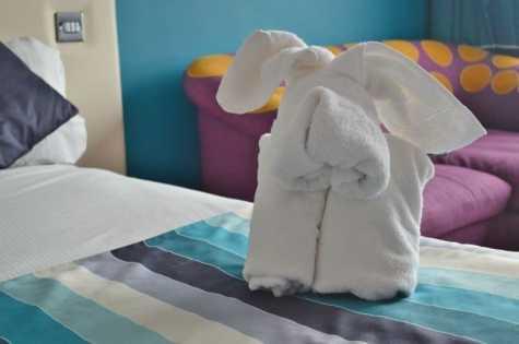 butlins-shoreline-hotel-dog-towel-creation