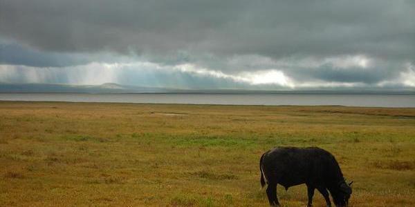 Arusha, Tanzania – Day 184
