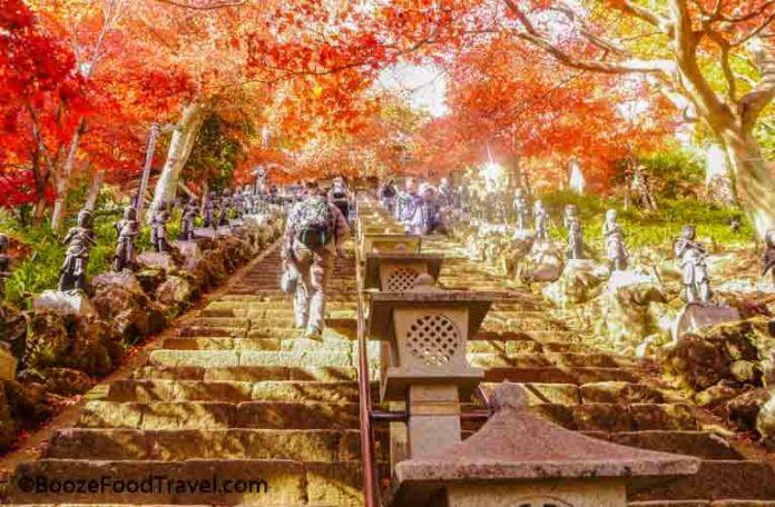 mt oyama steps