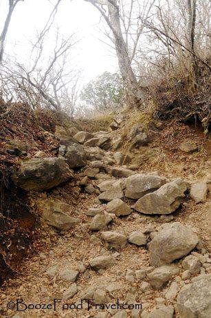 mt oyama trail
